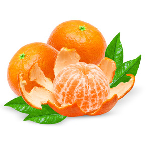 Seedless clementine