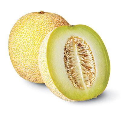 pic melon galia